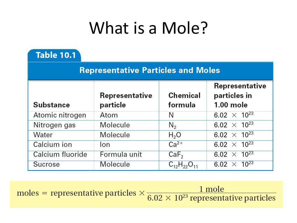 10.1 What is a Mole