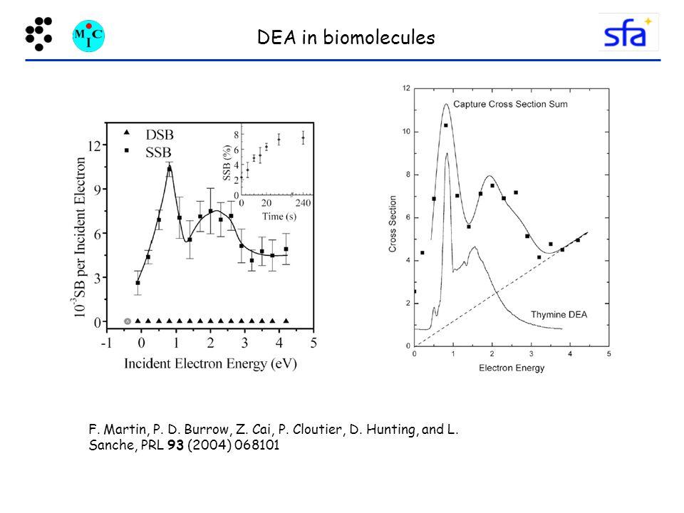 DEA in biomolecules F. Martin, P. D. Burrow, Z.