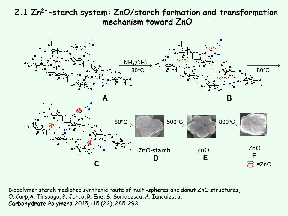 2.1 Zn2+-starch system: ZnO/starch formation and transformation
