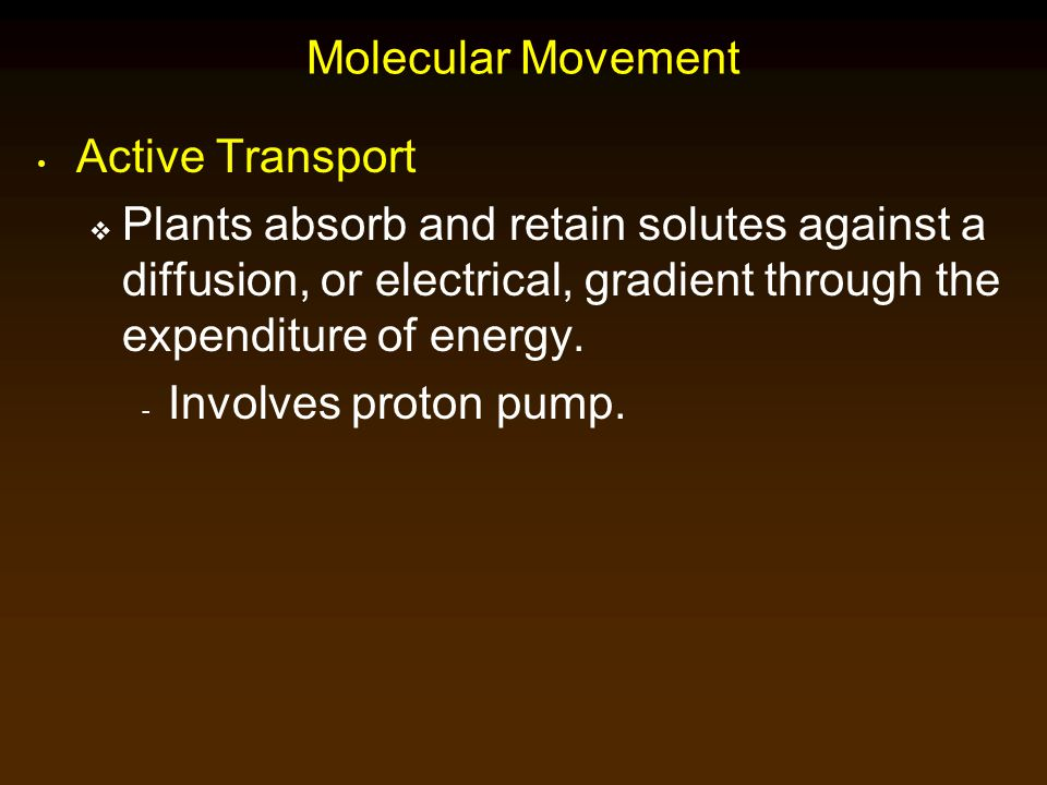 Molecular Movement Active Transport.