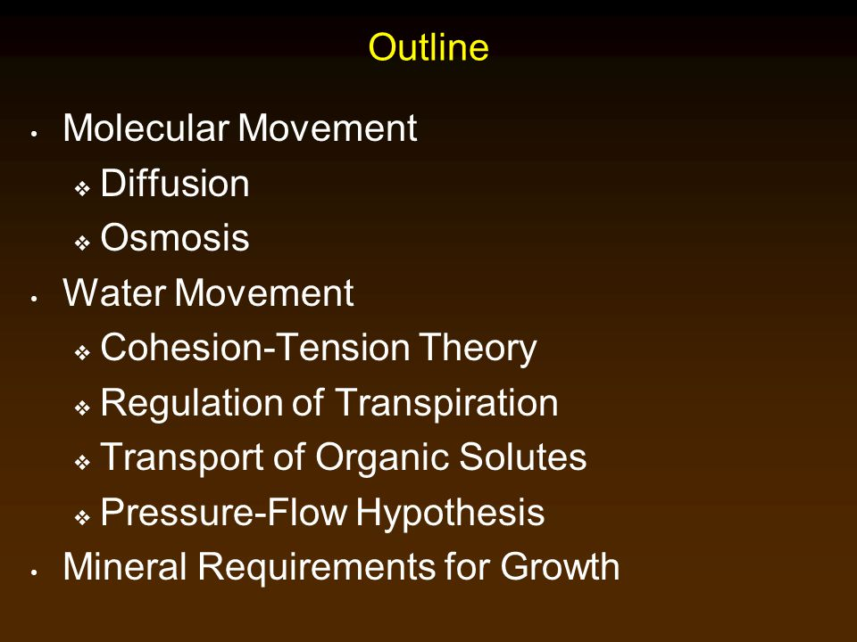 Outline Molecular Movement. Diffusion. Osmosis. Water Movement. Cohesion-Tension Theory. Regulation of Transpiration.