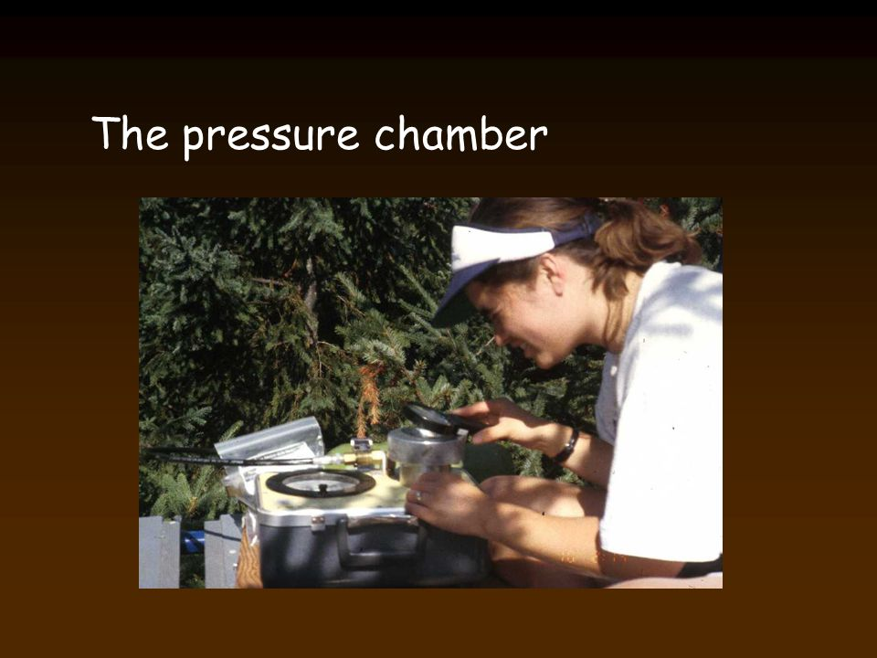 The pressure chamber