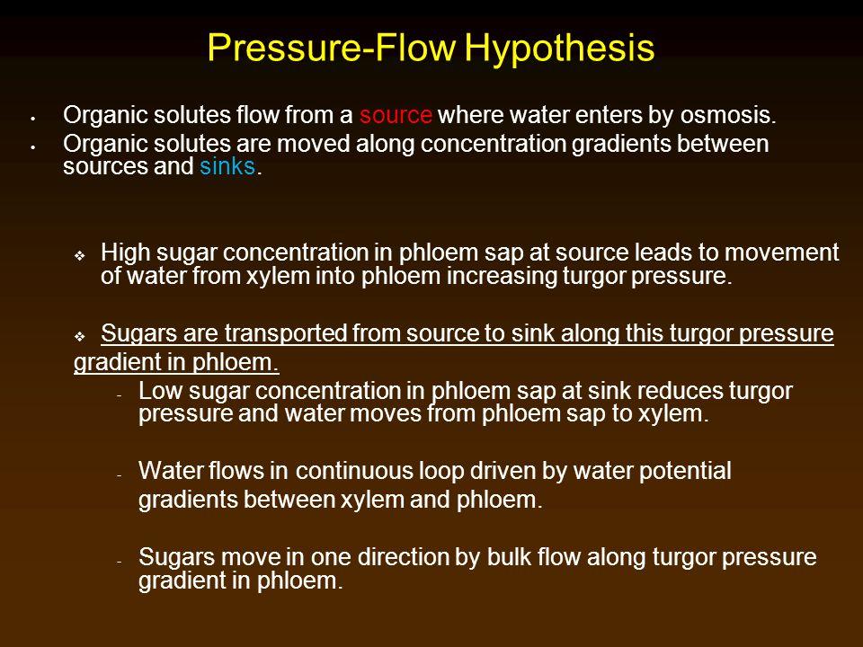 Pressure-Flow Hypothesis