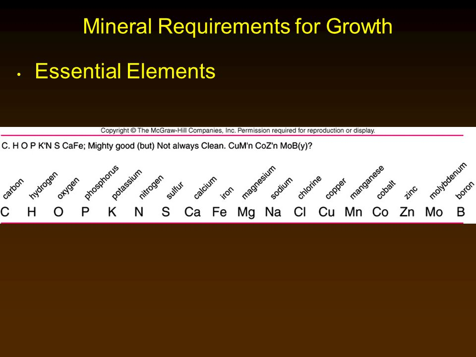 Mineral Requirements for Growth