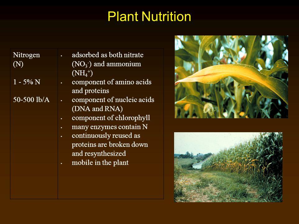 Plant Nutrition Nitrogen (N) 1 - 5% N 50-500 lb/A
