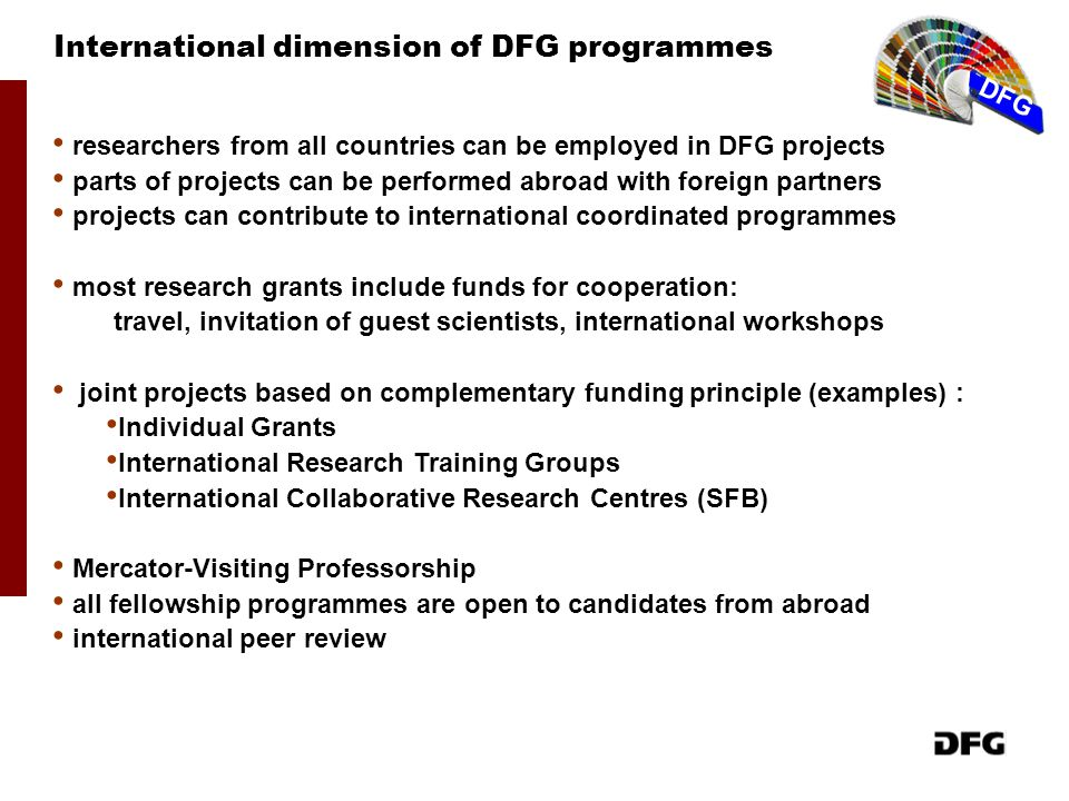 International dimension of DFG programmes