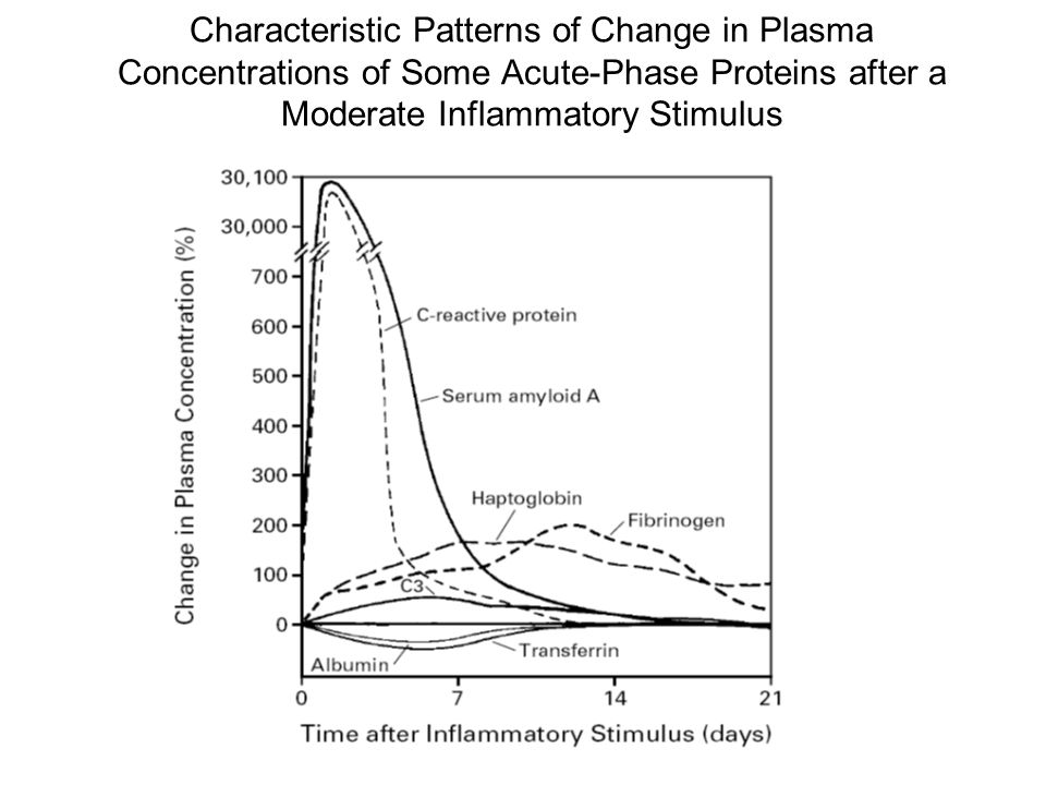 Characteristic Patterns of Change in Plasma Concentrations of Some Acute-Phase Proteins after a Moderate Inflammatory Stimulus