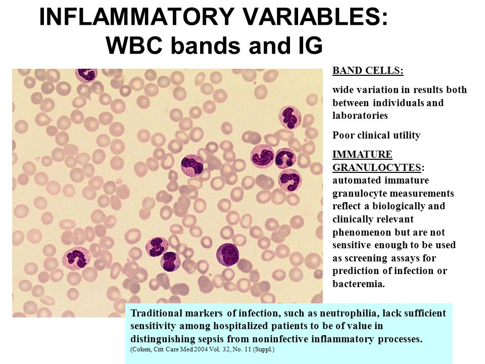 INFLAMMATORY VARIABLES: WBC bands and IG