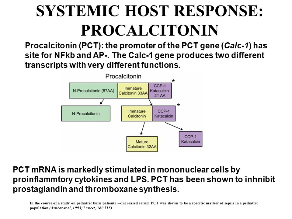 SYSTEMIC HOST RESPONSE: PROCALCITONIN