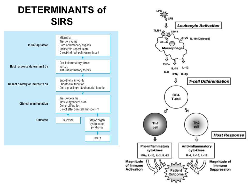 DETERMINANTS of SIRS