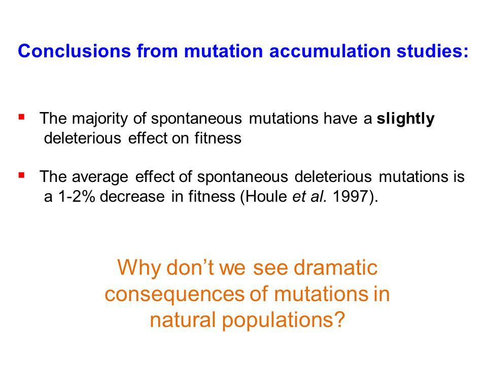 Conclusions from mutation accumulation studies: