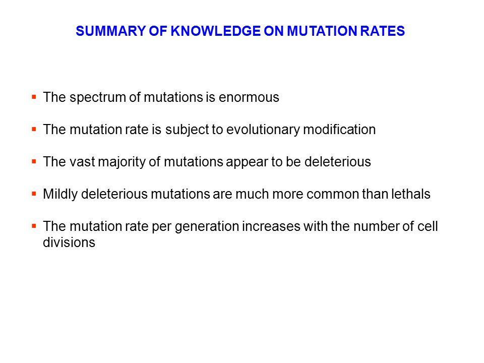 SUMMARY OF KNOWLEDGE ON MUTATION RATES