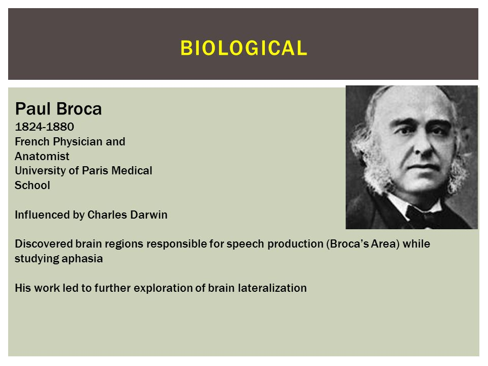 biological Paul Broca 1824-1880 French Physician and Anatomist