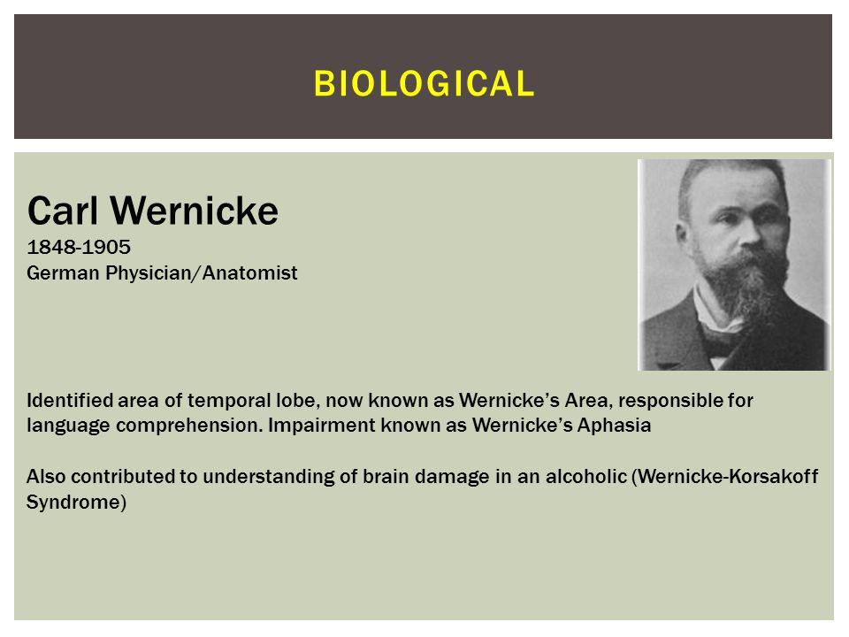 Carl Wernicke biological 1848-1905 German Physician/Anatomist