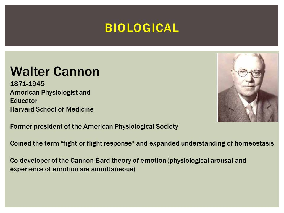 Walter Cannon biological 1871-1945 American Physiologist and Educator