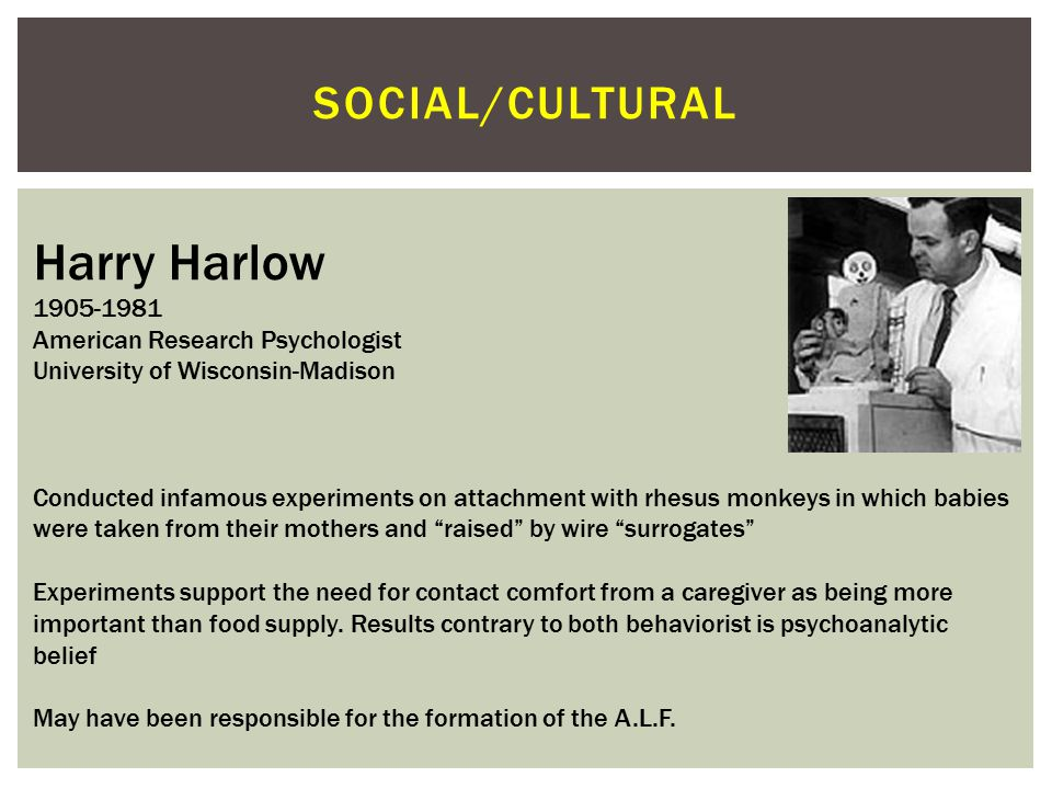 Harry Harlow Social/cultural 1905-1981 American Research Psychologist
