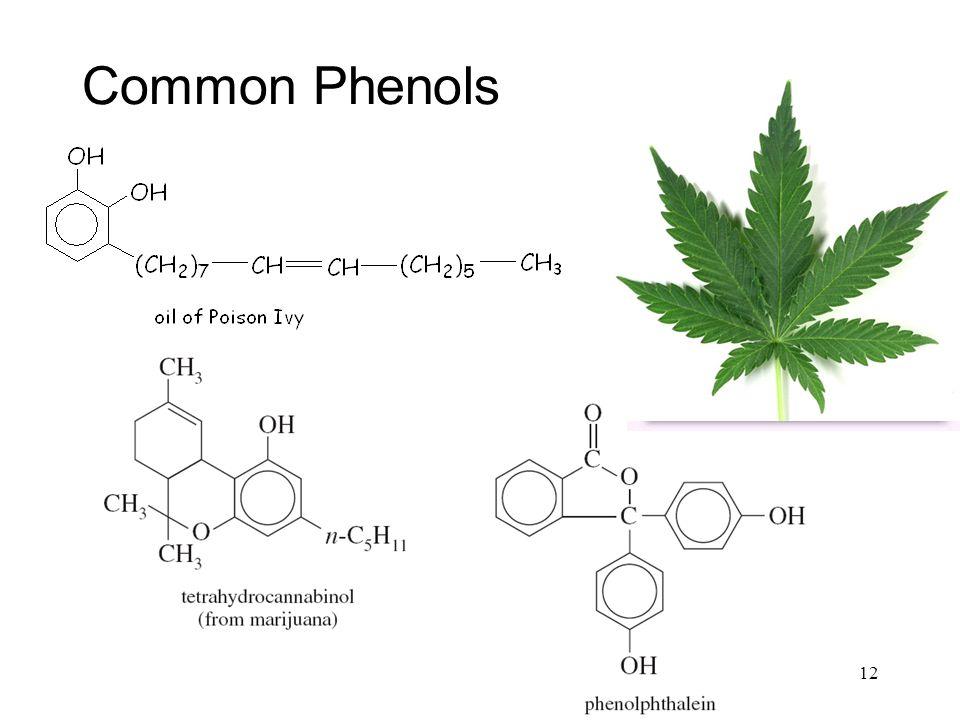 Common Phenols 12