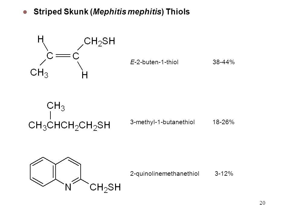 Striped Skunk (Mephitis mephitis) Thiols