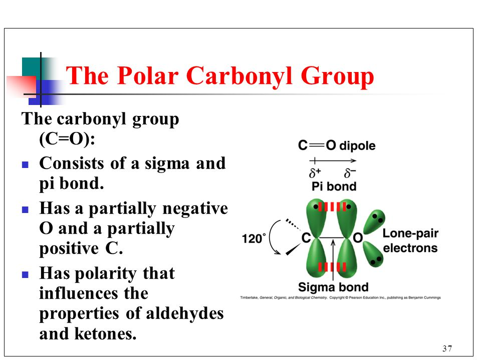 The Polar Carbonyl Group