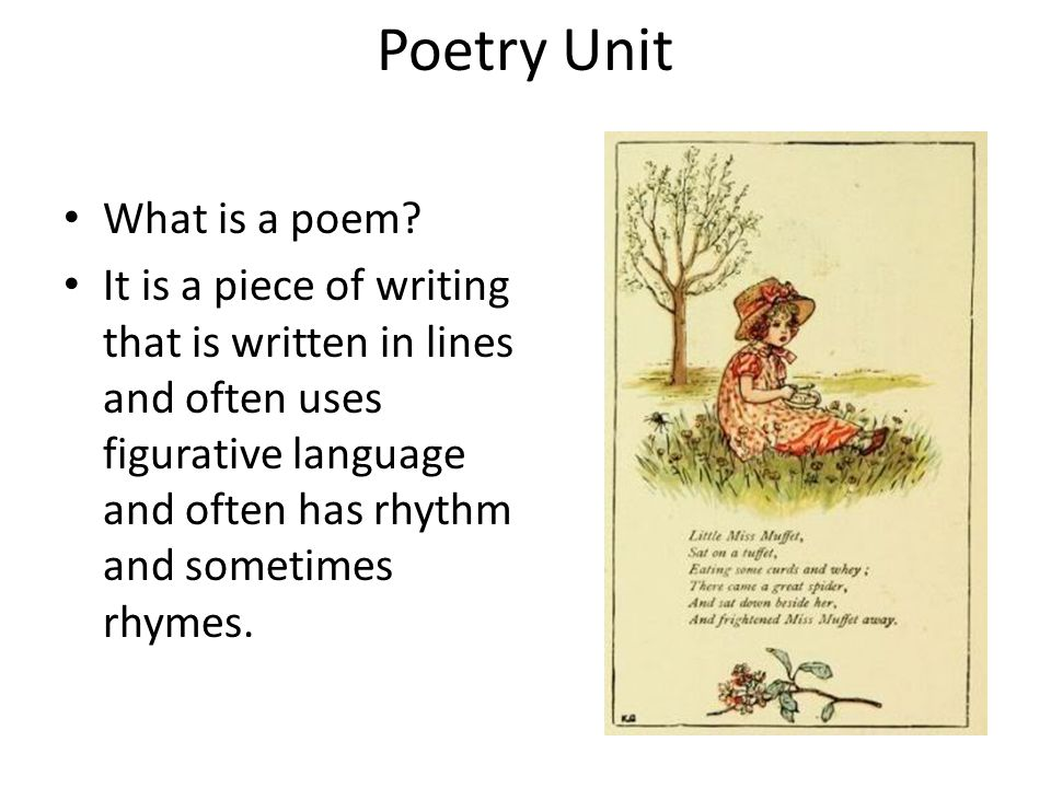 Poetry Unit What is a poem