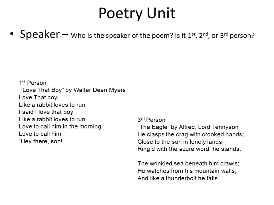 Poetry Unit Speaker – Who is the speaker of the poem Is it 1st, 2nd, or 3rd person 1st Person. Love That Boy by Walter Dean Myers.