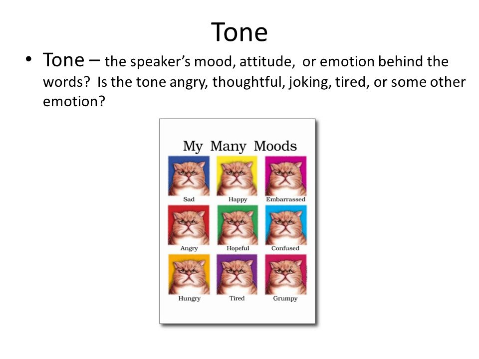 Tone Tone – the speaker's mood, attitude, or emotion behind the words.