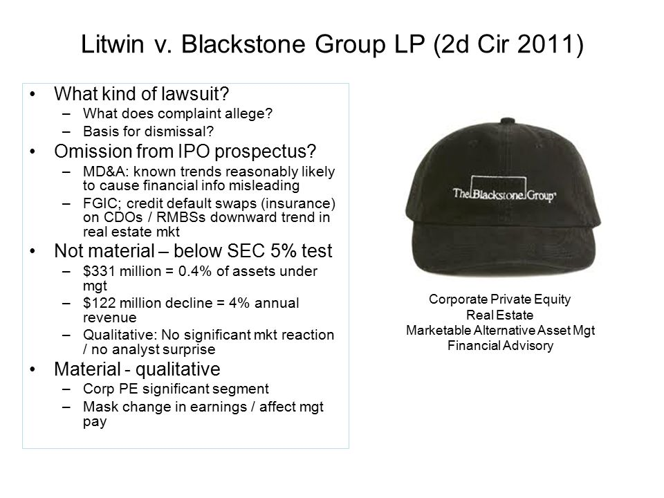 Litwin v. Blackstone Group LP (2d Cir 2011)