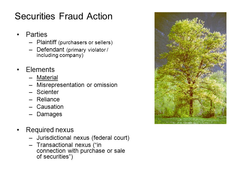 Securities Fraud Action