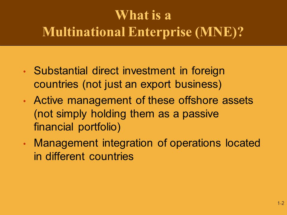 What is a Multinational Enterprise (MNE)