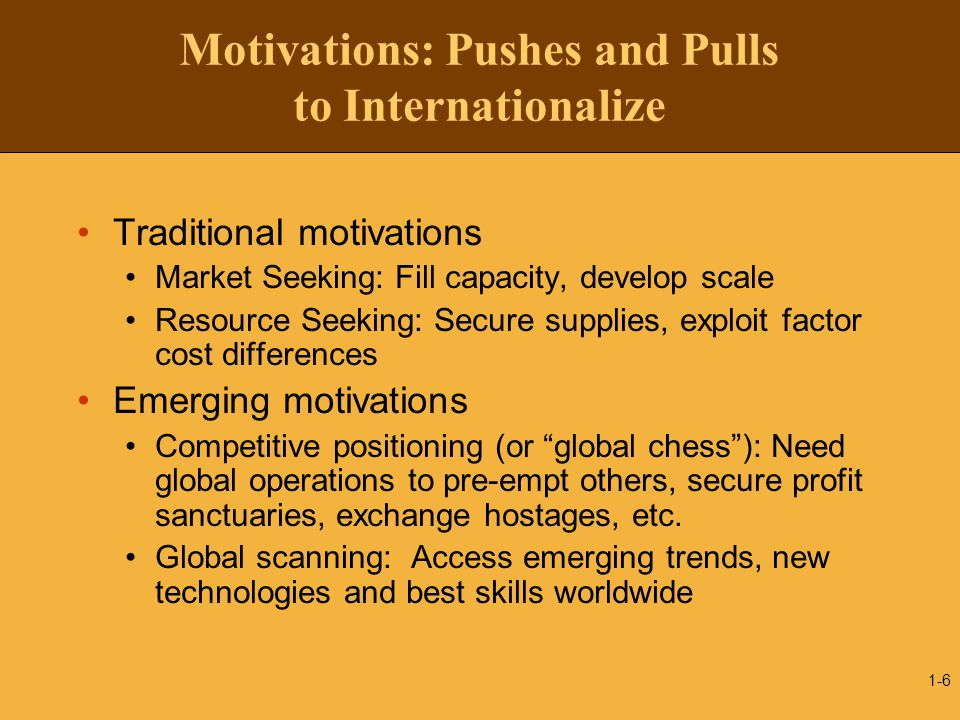 Motivations: Pushes and Pulls to Internationalize