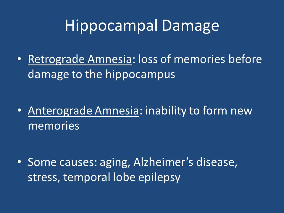 Hippocampal Damage Retrograde Amnesia: loss of memories before damage to the hippocampus. Anterograde Amnesia: inability to form new memories.