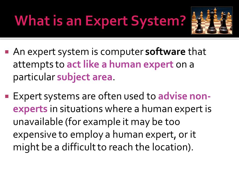 What is an Expert System
