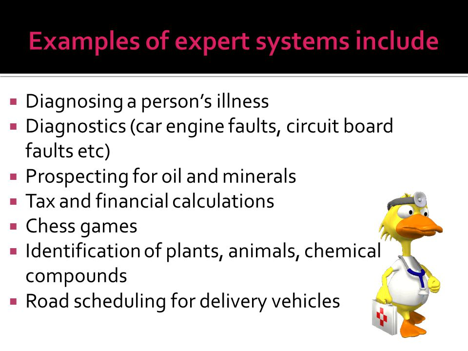 Examples of expert systems include