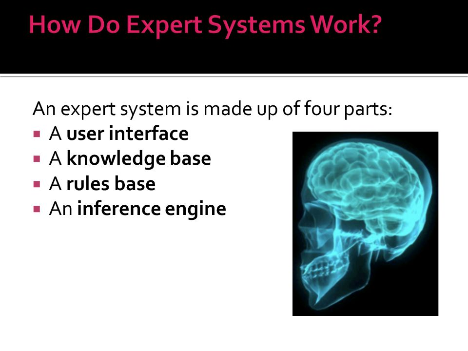 How Do Expert Systems Work