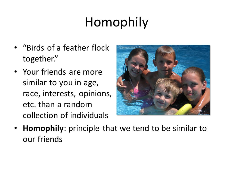 Homophily Birds of a feather flock together.