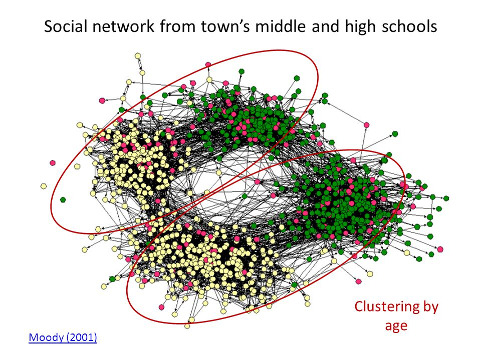 Social network from town's middle and high schools