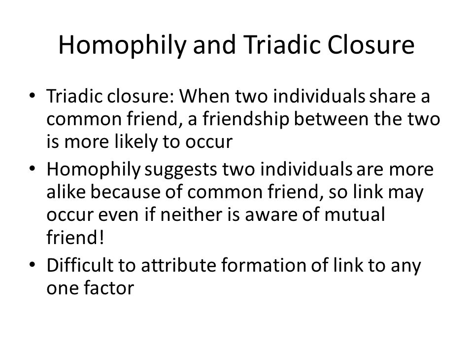 Homophily and Triadic Closure