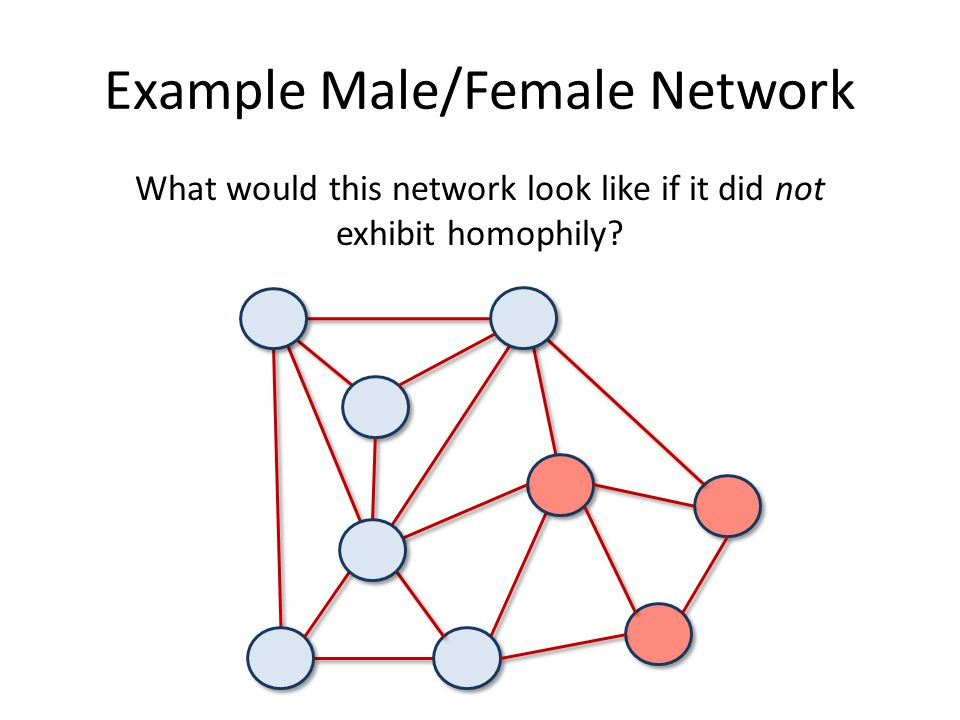 Example Male/Female Network