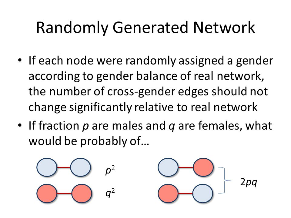 Randomly Generated Network