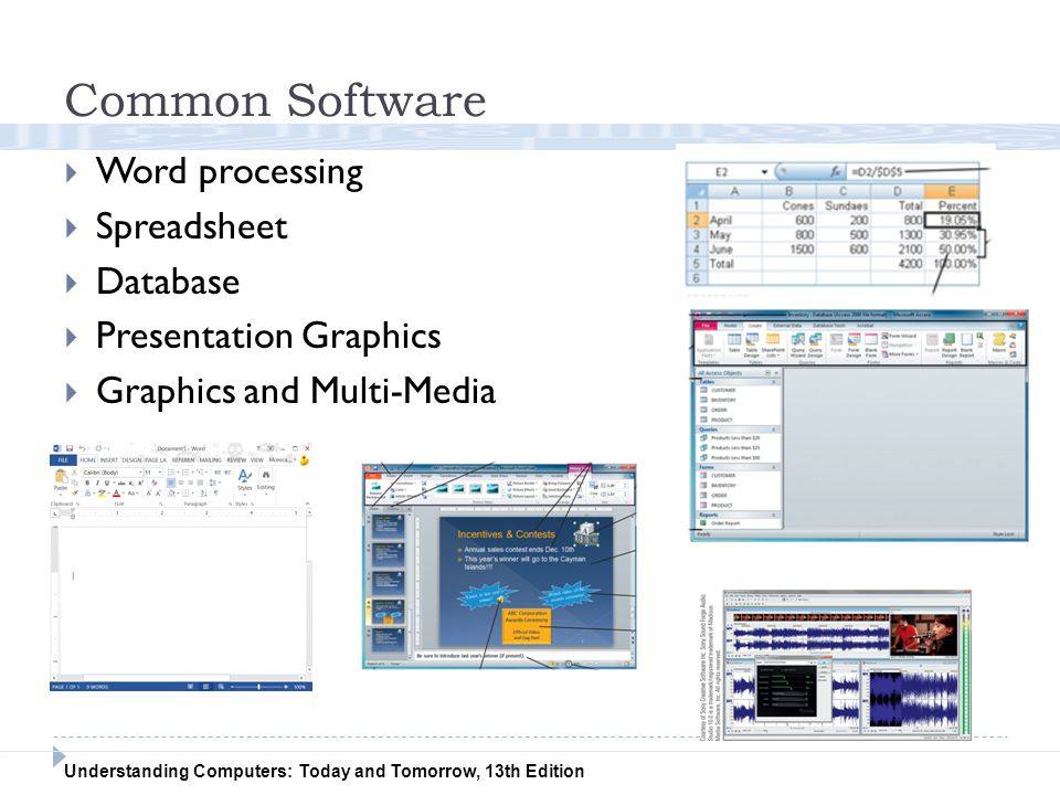 Common Software Word processing Spreadsheet Database