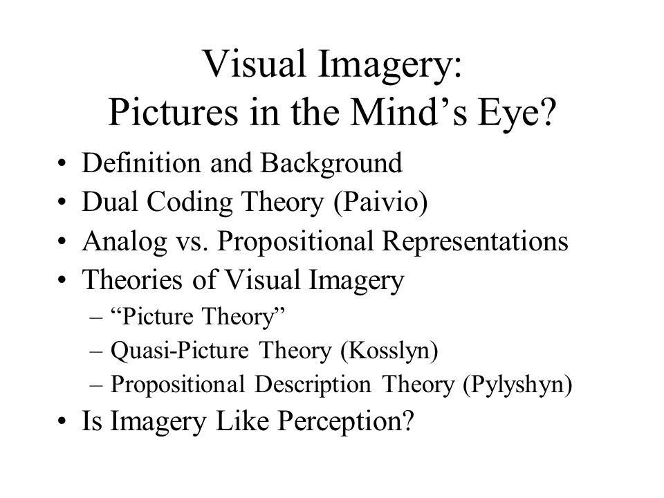 Visual Imagery: Pictures in the Mind's Eye