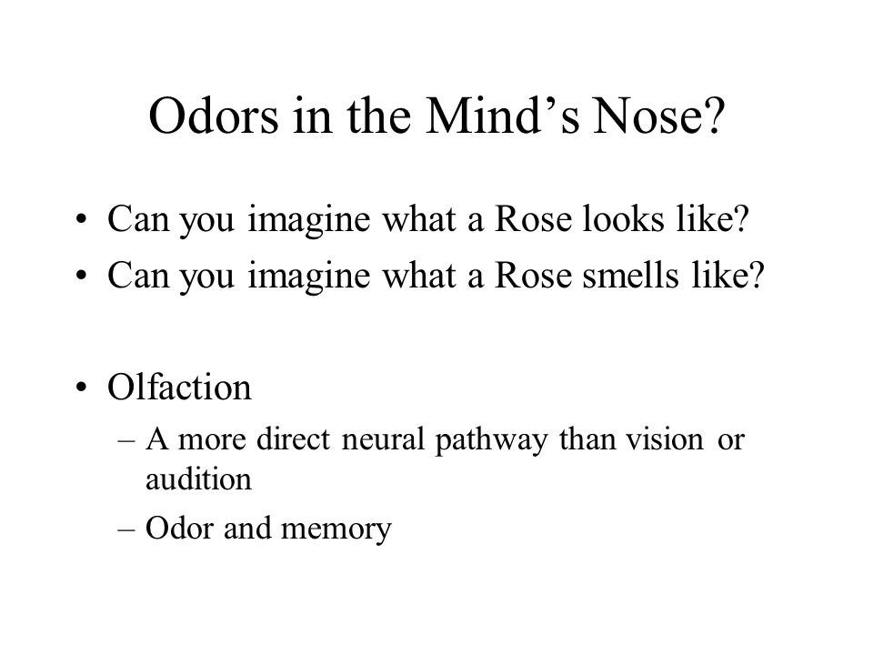 Odors in the Mind's Nose