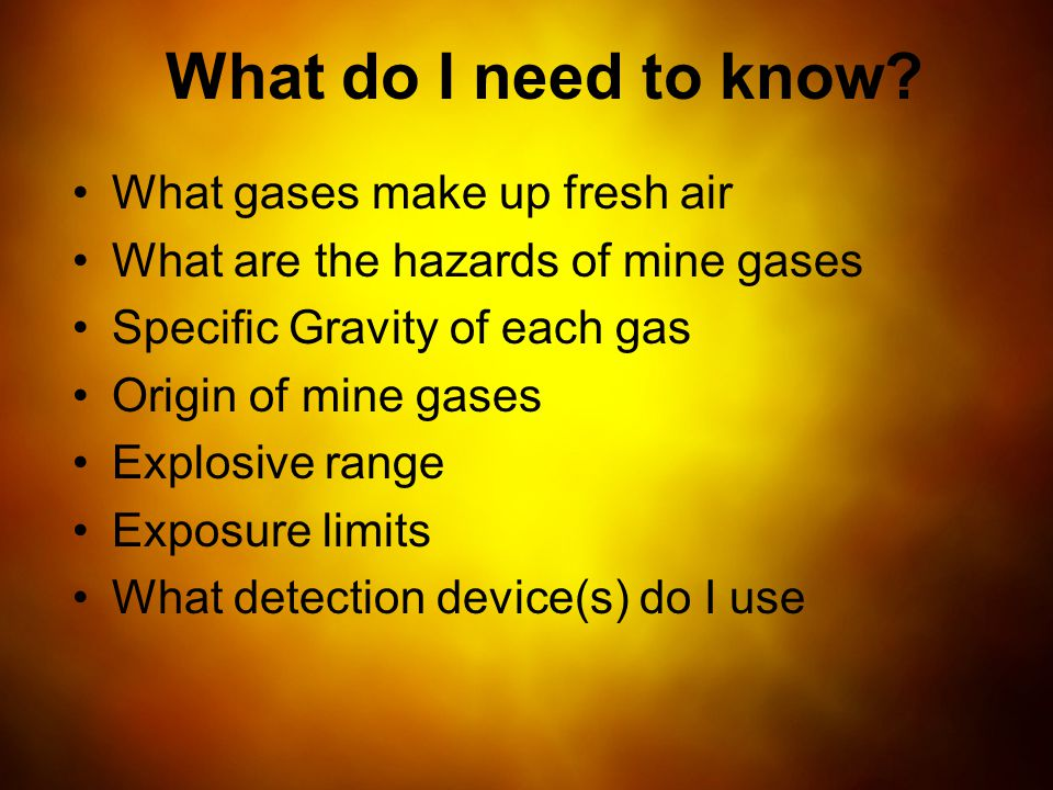 What do I need to know What gases make up fresh air