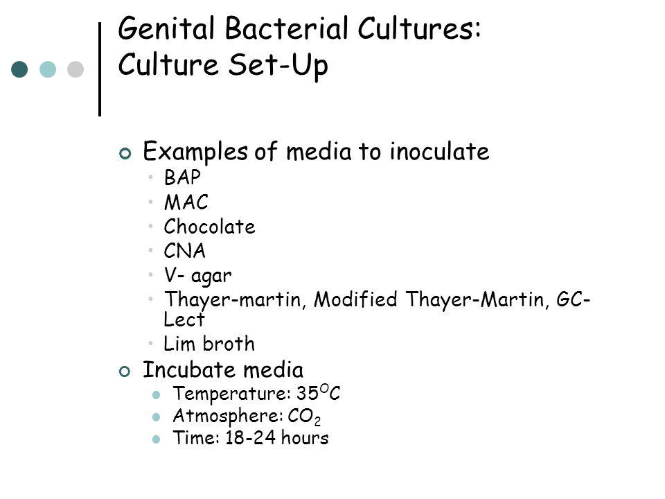 Genital Bacterial Cultures: Culture Set-Up