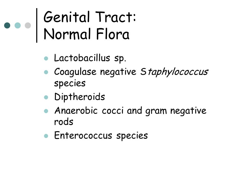 Genital Tract: Normal Flora