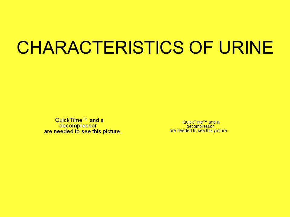 CHARACTERISTICS OF URINE