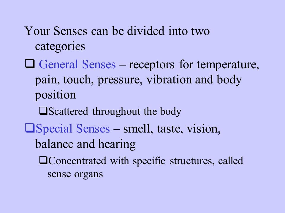 Your Senses can be divided into two categories