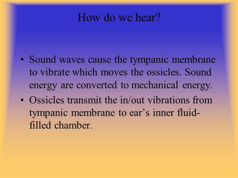 How do we hear Sound waves cause the tympanic membrane to vibrate which moves the ossicles. Sound energy are converted to mechanical energy.