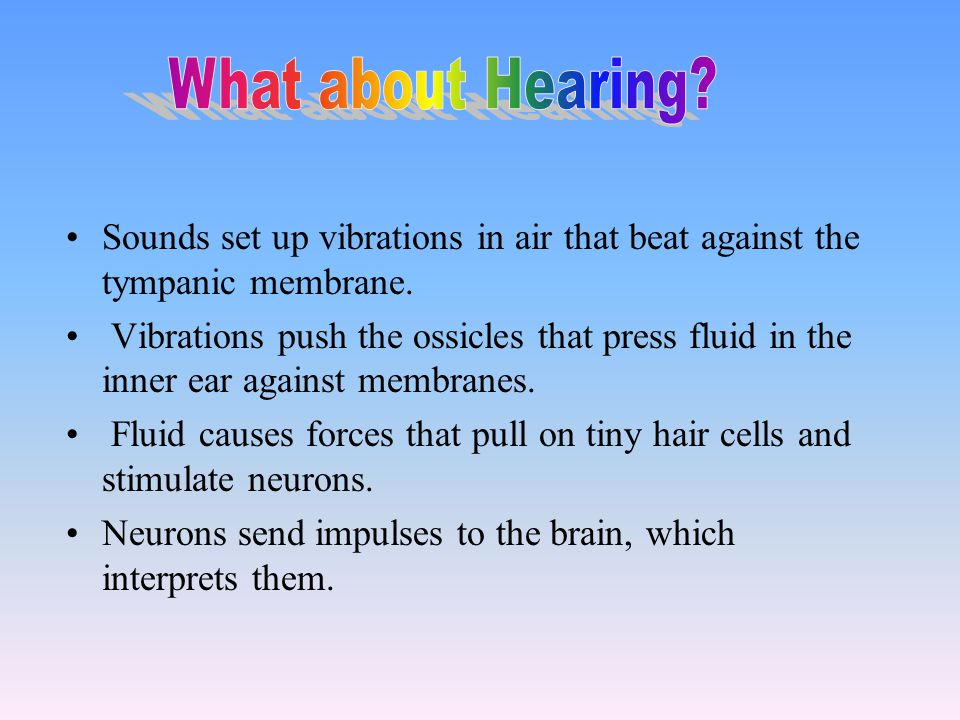 What about Hearing Sounds set up vibrations in air that beat against the tympanic membrane.