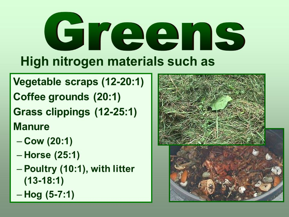 Greens High nitrogen materials such as Vegetable scraps (12-20:1)